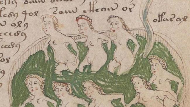 Un dettaglio dell'indecifrabile Manoscritto di Voynich.