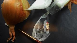 La pellicina della cipolla