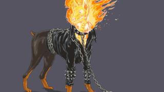 Ghost Rider in versione canina