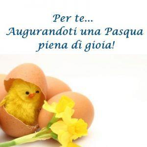 Un pulcino che esce dall'uovo - Immagini per auguri di Buona Pasqua
