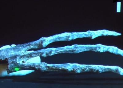 Le dita delle misteriose mummie