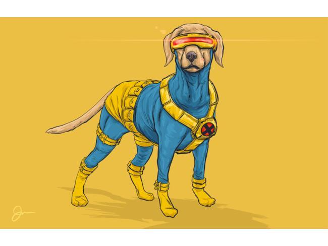 Ciclope in versione canina