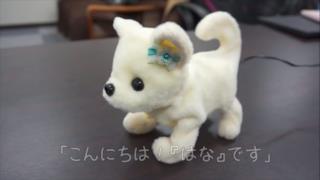 Ecco una prima foto del piccolo robot canino