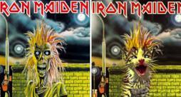 Un gatto come gli Iron Maiden
