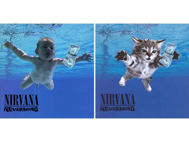 Il gatto a cui piacciono i Nirvana