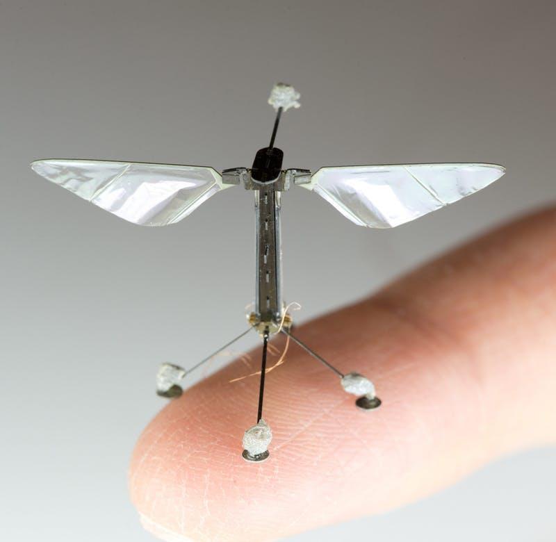 Prototipo di RoboApe progettato a Harvard