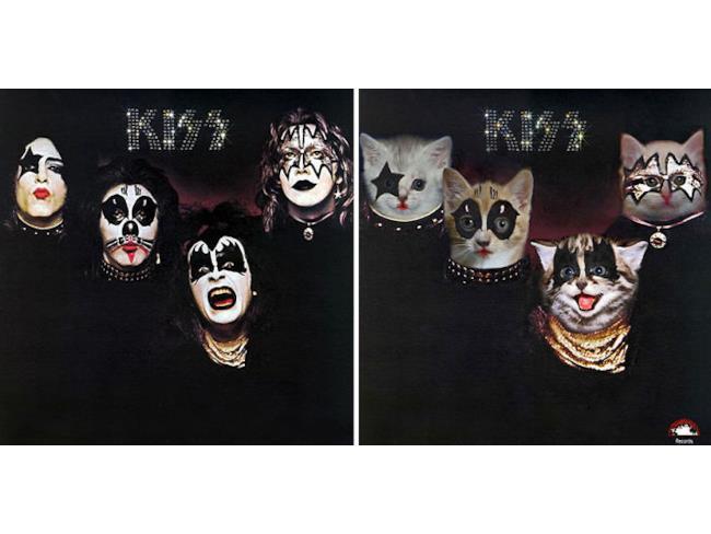 I gatti come i Kiss