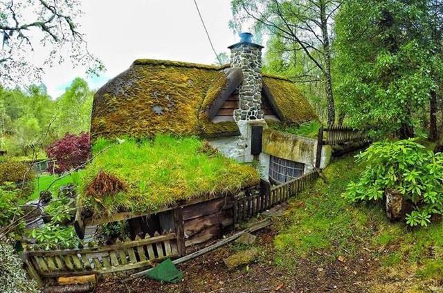 Il retro della casa e il giardino