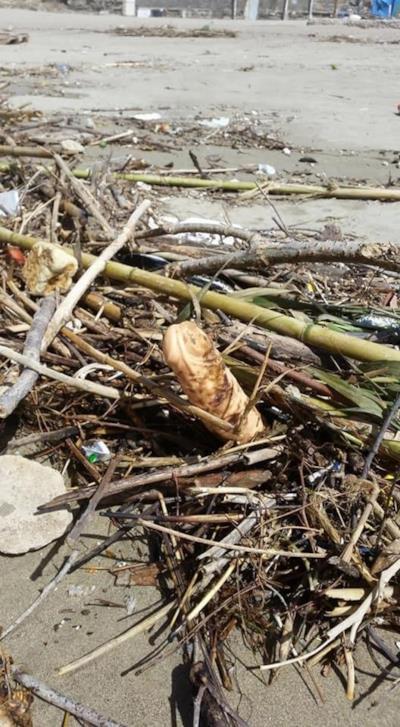 Un pene di plastica in spiaggia