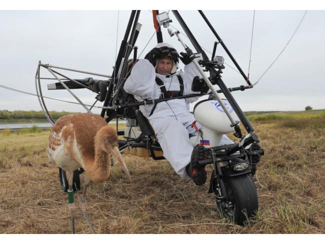 Putin si prepara per volare