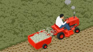 Illustrazione satirica di John Holcroft sulla deforestazione