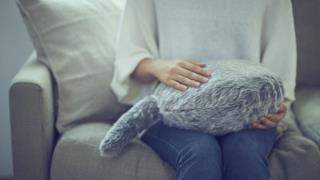 Il gatto senza testa mentre riceve coccole