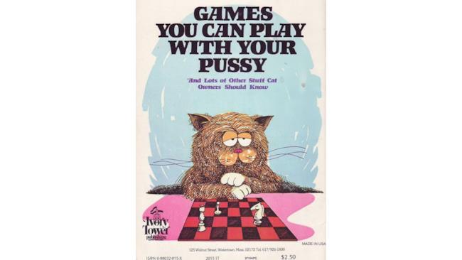 Giochi che puoi fare con la tua micetta