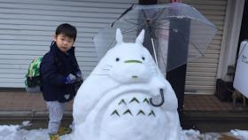 Totoro di ghiaccio