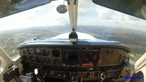 uccello rompe il parabrezza di un aereo in volo