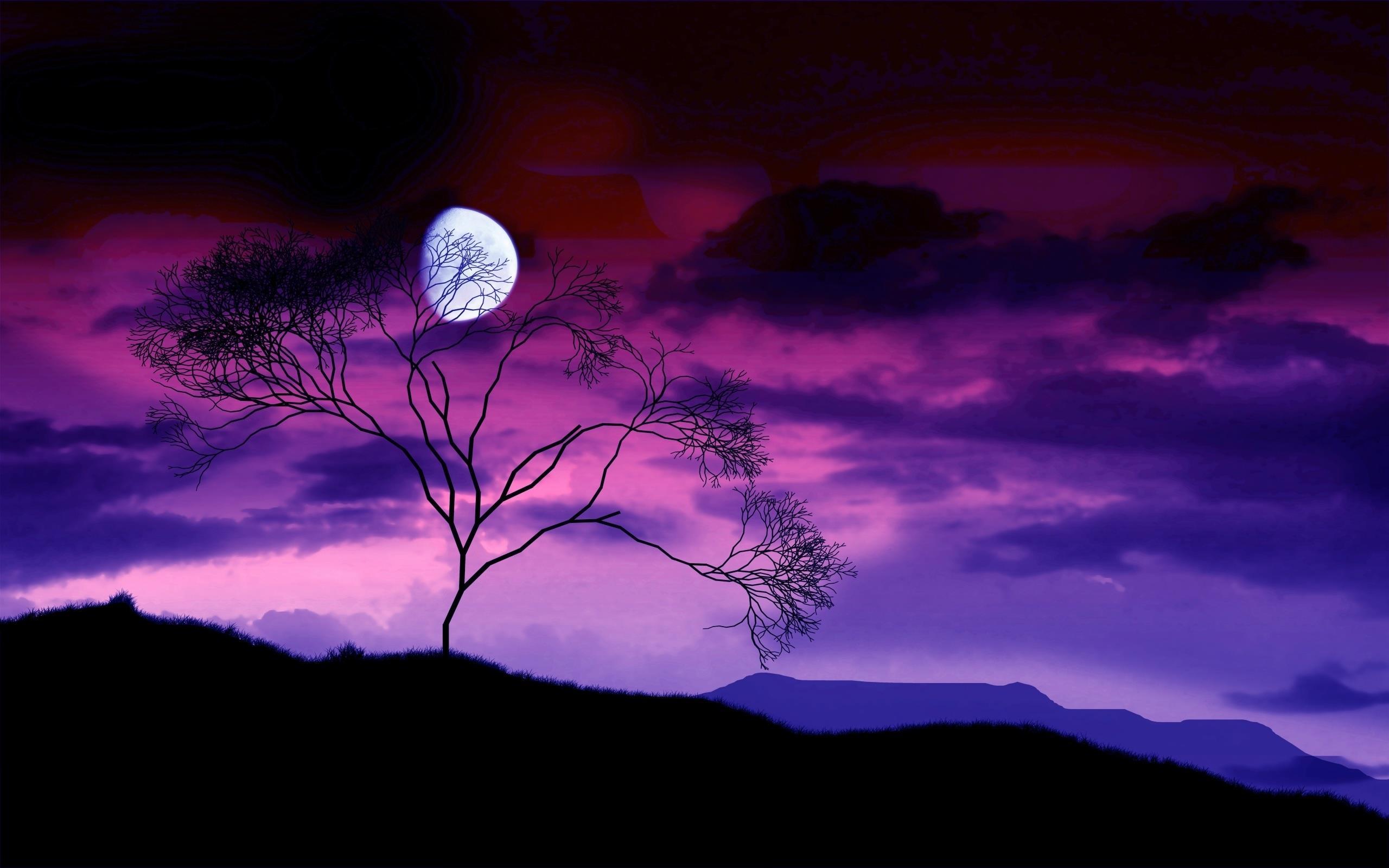 Paesaggio in controluce con un albero spoglio e la Luna
