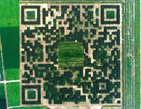 Un'immagine del QR code visto dall'alto