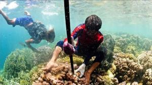 I Bajau mentre pescano