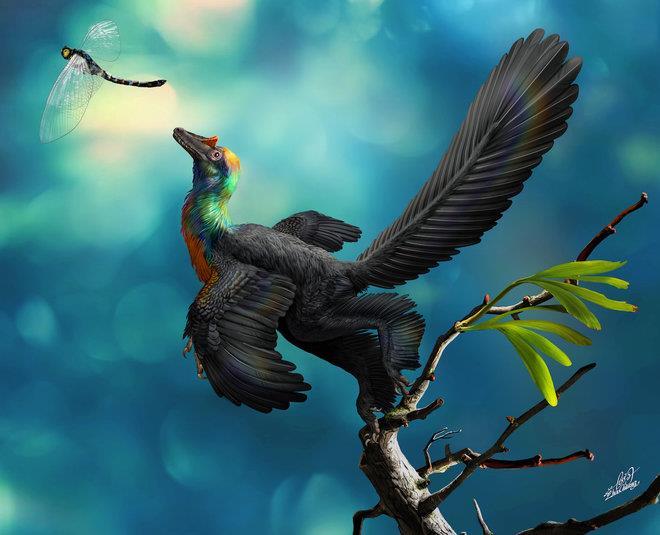 Il dinosauro arcobaleno