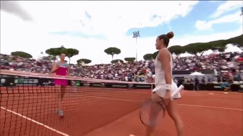 Una tennista arrabbiata prende a racchettate la sedia dell'arbitro - Le GIF più divertenti da scaricare e condividere su Facebook e WhatsApp