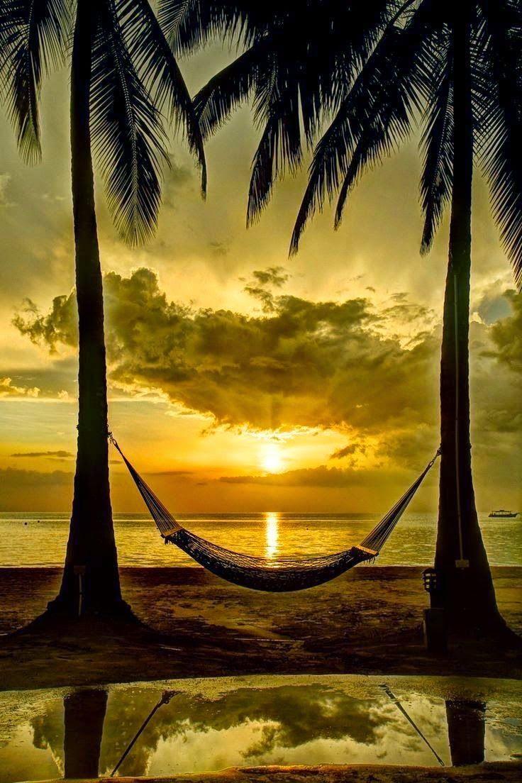 Una amaca al tramonto in spiaggia - Sfondi per PC, iPhone, Android e profilo WhatsApp da scaricare
