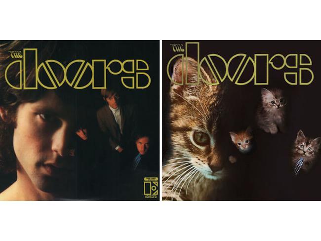 I gatti come i Doors
