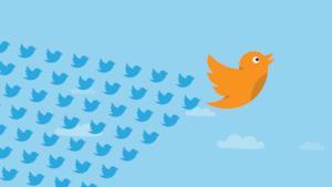 Il celebre pennuto di Twitter
