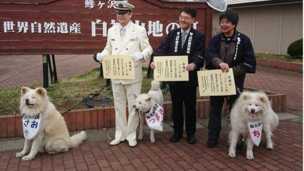 In Giappone, un cane saluta i turisti in stazione