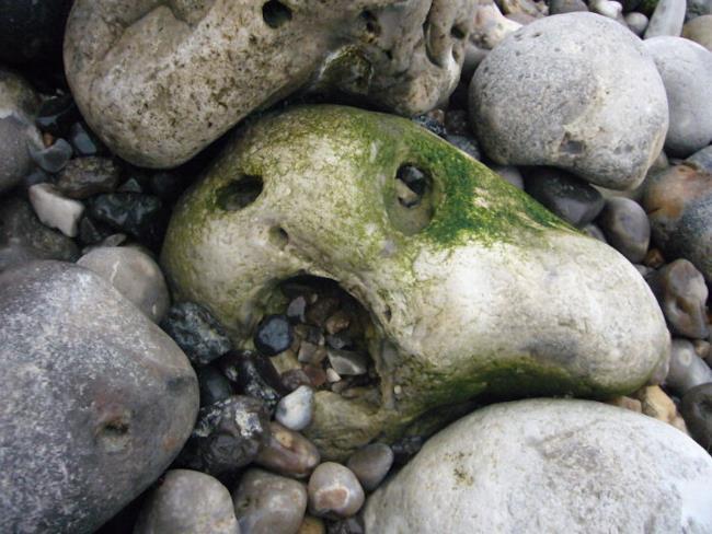 Pietra che sembra un volto