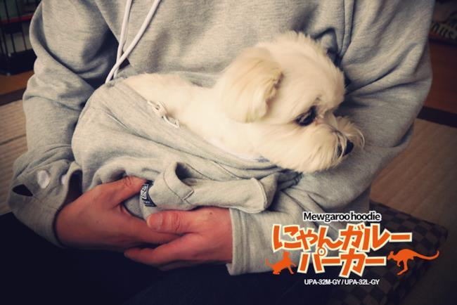 Un cane alloggiato nella felpa con tasca per animali
