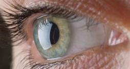 Il rimedio alla degenerazione maculare è un trattamento condotto tramite staminali