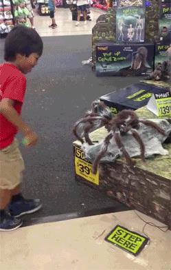 Le migliori immagini di Halloween da scaricare gratis - Il ragno