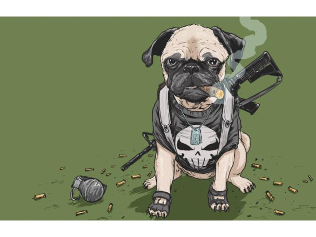 Il Punisher in versione canina