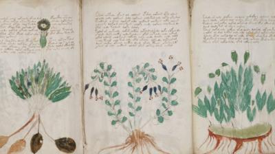 L'oscuro manoscritto di Voynich