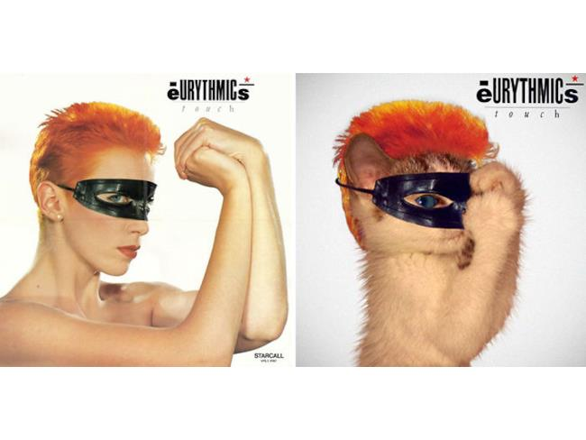 Il gatto degli Eurythmics