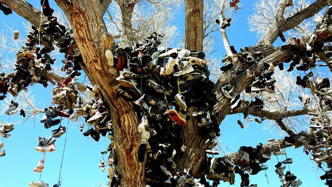 Gli alberi con le scarpe sono popolari in tutto il mondo