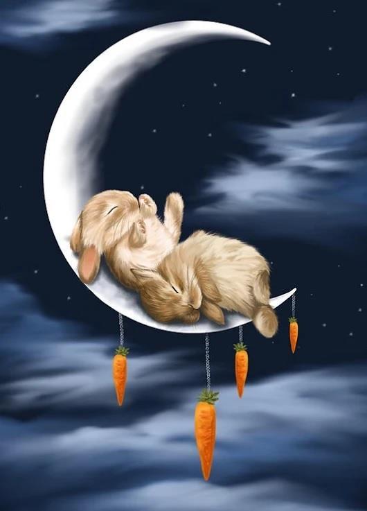 Due conigli dormono sulla Luna