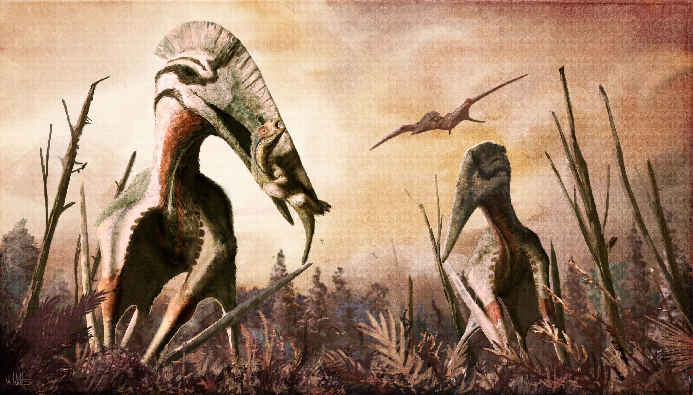 La ricostruzione digitale del Pterosauro