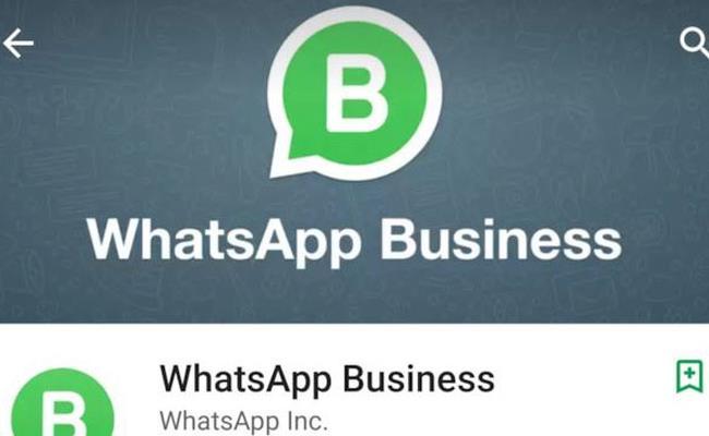 WhatsApp Business su Google Play Store