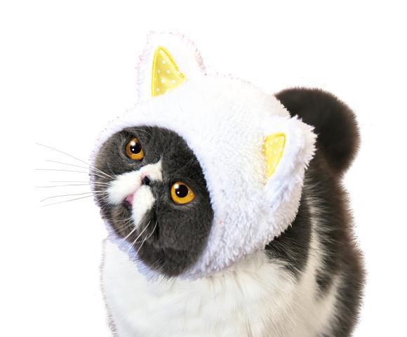 La versione bianca del berretto