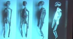 Le mummie aliene