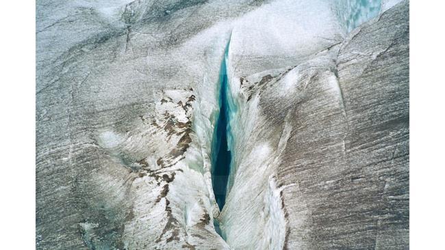 Le migliori 10 foto di Vagine nella natura - 1