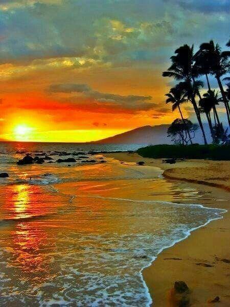 Una spiaggia al tramonto - Sfondi per PC, iPhone, Android e profilo WhatsApp da scaricare