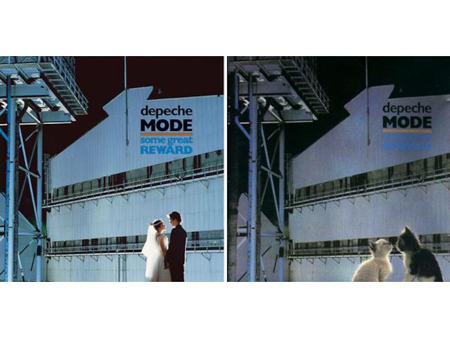 I gatti come i Depeche Mode