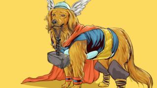 Thor in versione canina