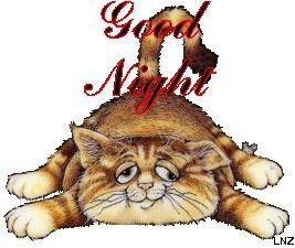 Una gif con un gatto mezzo addormentato