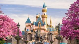 il parco divertimenti Disneyland