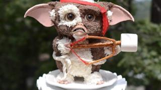 La torta a forma di Gizmo