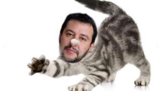 Salvini è stato trasformato in un gatto