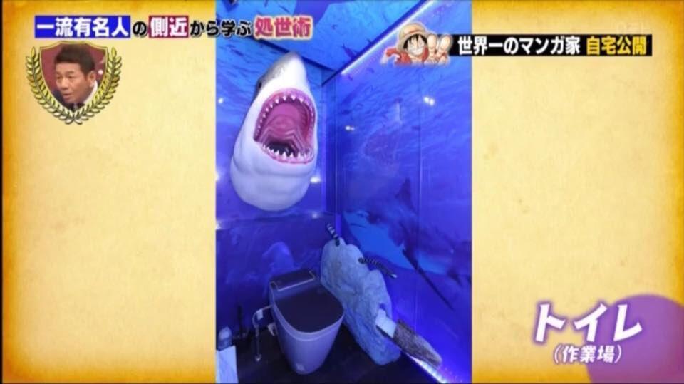 Se avete paura degli squali questo bagno non fa per voi